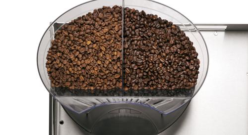 Cafina® ALPHA - Transparent coffee bean container